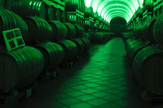 Verdi och grönt LED-ljus får grappan att vila på Berta